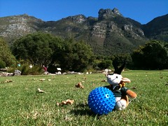 Perfect picnicing at Kirstenbosch
