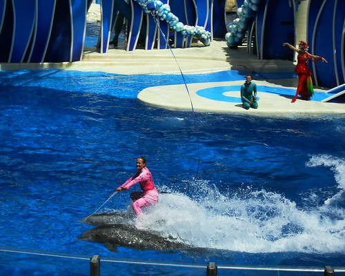 sea world 108
