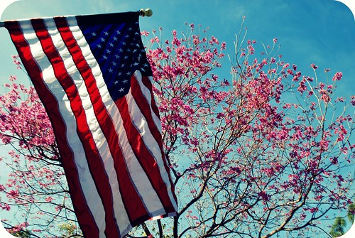 Flowers on Trees and Flag