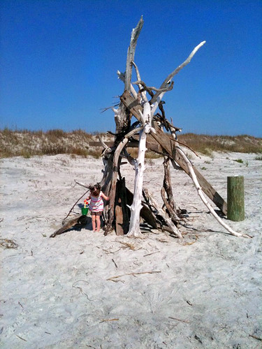 Cool Teepee made with driftwood