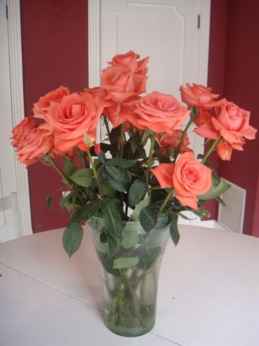 ecuador-mother's-day-Roses