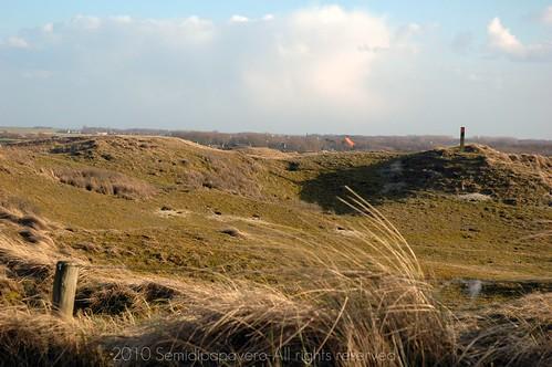Dune - Texel