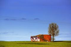 La casa de Cheshire (Zyllan Fotografa) Tags: espaa streetart casa spain castillaylen countryart aliciaenelpaisdelasmaravillas ruralart gatodecheshire tripleniceshot zyllan lvdsf lavergenzadeserfeliz zyllanfotografa zyllanphotography