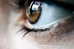 Adesso. ([L] di .zuma) Tags: eye closeup canon finestra lente occhio luce riflesso iride pupilla ciglia