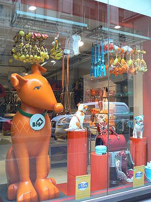 chien orange.jpg
