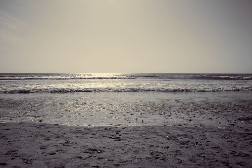 beachDuotone_7164