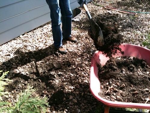 digging3