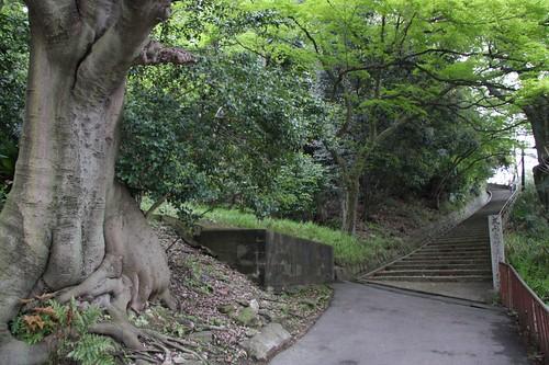 意賀美神社参道 Okami-jinja Shrine