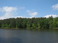 Reedy Creek Lake Photo