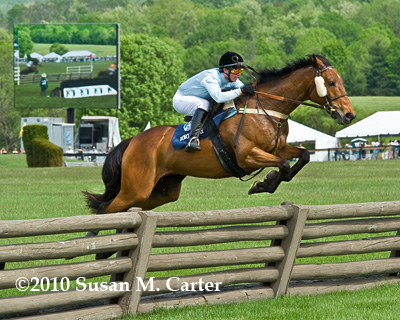 Fort Henry jumps a steeplechase timber fence in the Virginia Gold Cup