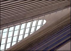 Gare Lige-Guillemins (Rick & Bart) Tags: station belgique gare belgi trainstation luik santiagocalatrava architectuur lige archtiecture lttich botg ligeguillemins rickbart rickvink