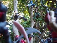 Eternal Prisoners of Cobra-La! (Dudesnbots) Tags: trooper dave lady toys cobra guard royal joe shipwreck transformers jaye diorama gi autobot mustaine decepticon megadave