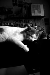 Como dormir en el aire