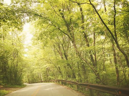 Monte Sano Drive