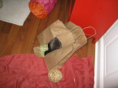 Paper Bag Toy (kohlin) Tags: pets cute bunnies amelia rabbits
