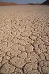 20090830 Sossusvlei 268 (blogmulo) Tags: travel white blanco trek canon landscape dead desert dune salt dry paisaje viajes desierto duna namibia seco 2009 sal sossusvlei vlei canon450d blogmulo