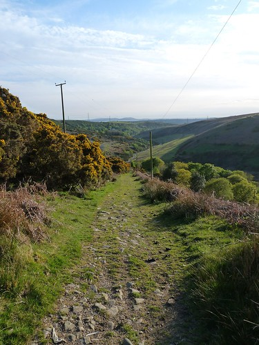12466 - Cwm Dulais valley