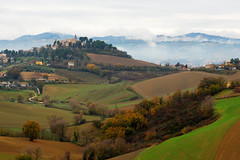 Hills of Pesaro (MartinePasquini) Tags: trees winter sky italy cloud mountain tree nature colors clouds forest season landscape woods flora europe quiet peace branches hill dry mount lone lonely pesaro marche montemaggiorealmetauro