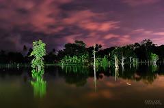 gardena fresca (joshwaaaproject) Tags: city trees sky food nature water photoshop dark lens nikon earth kit davao d60 cs3