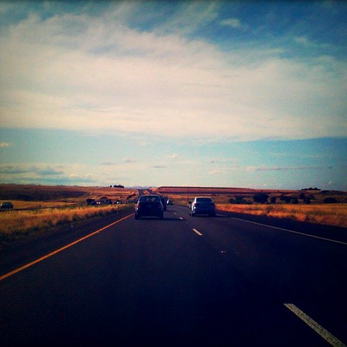 Life:  The Open Road