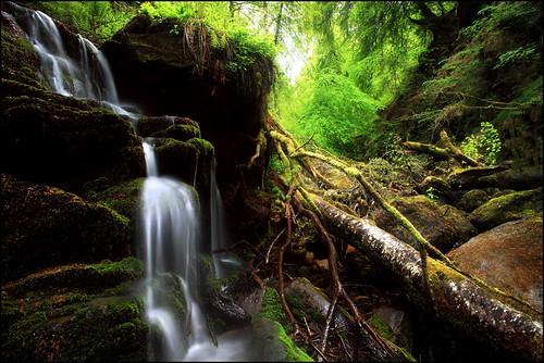 Waterfall Birks O Aberfeldy