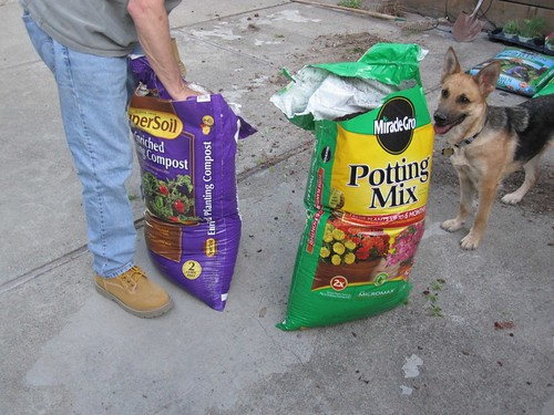 Potting Mix and Compost