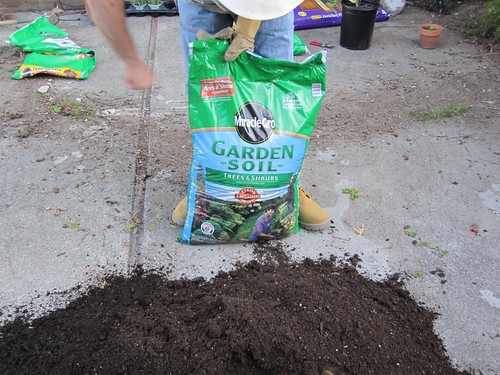 Soil for trees