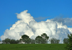 Rising clouds from the edge - Sorgere di nuvole dal crinale (Robyn Hooz) Tags: trees sky italy panorama grass alberi clouds canon landscape nuvole view blu sigma os erba cielo tuscany vista toscana 18125 hsm 1000d