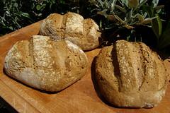 Spelt loaves