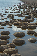 Thrombolites - Lake Clifton (2) (pixbytk - Who knew 4 years would go so fast???) Tags: mtrtrophyshot