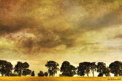 Turner meets Constable (Shuggie!!) Tags: light sky painterly tree art clouds rural painting landscape scotland williams artistic dramatic fields karl turner hdr textured constable kirkintilloch explored karlwilliams magicunicornverybest selectbestexcellence sbfmasterpiece