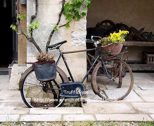 布根第的農舍客棧。Auberge la Beursaudiere-Nitry-100511