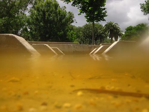 Dentro e fora de água (Parque das Conchas)