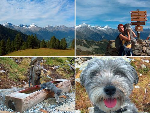 Escursioni in montagna d'estate nella Valle Aurina Alto Adige