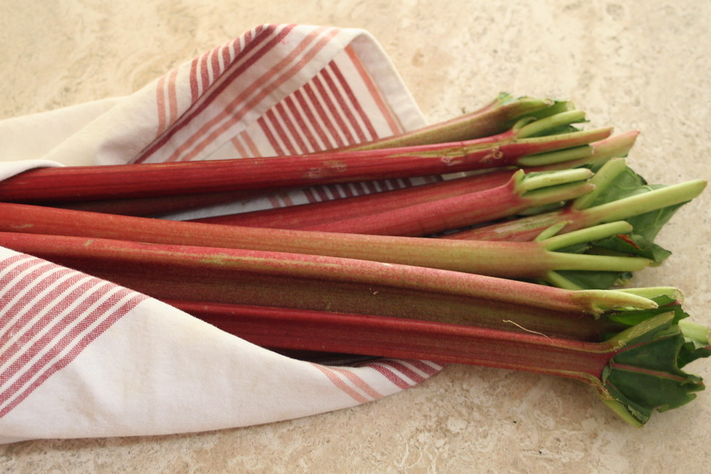 Rhubarb by whitneyinchicago, on Flickr