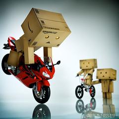 071/365:  Danbo Endo! (Randy Santa-Ana) Tags: toys tricks motorbike stunt stoppie endo danbo gf1 project365 danboard minidanboard minidanbo 365daysofdanbo hondacbr1000r