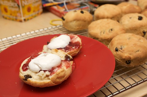 scones, jam and cream