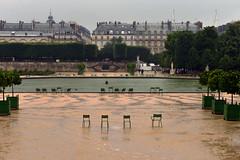 Four Chairs in the Garden (Eddie C3) Tags: parisfrance vacationphotos tuileriesgarden urbanparks jardindestuileries chairs emptychairs