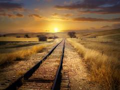 Prairie tracks 5 (mrbillt6) Tags: landscape rural prairie railroad tracks sunrise grass fall autumn outdoors country countryside northdakota