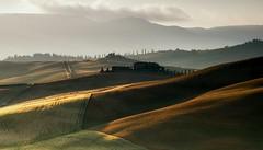 Tuscany Morning (Petra Runge) Tags: landscape tuscany landschaft toskana val dorcia italien italy acker kulturlandschaft feld licht field hügel hill light summer sommer
