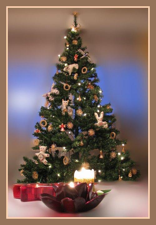 Jõulupuu 2009