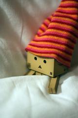sleepy time (Debbie Hickey) Tags: new night 50mm bed bedroom day sleep some read pillow cover dreams catch years debbie f18 zzzz duvet gets 2010 danbo primelens revoltech danboard zzzzzs debbiehickey debbiehickeycom 112010danbo