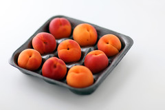 Apricots (AngelaBax) Tags: food fruit sweet eat apricots gettyimage canoneos5dmkll angbax