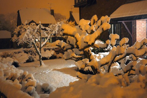 #uksnow in hampshire