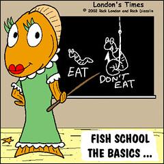 school-fish1