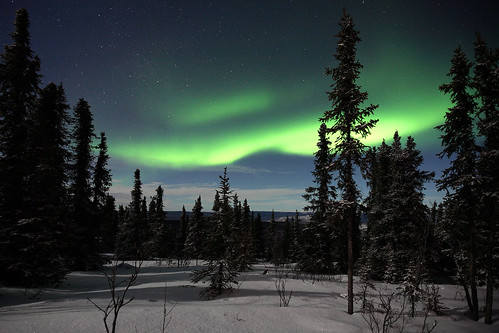 フリー写真素材, 自然・風景, オーロラ, 夜空, アメリカ合衆国, アラスカ州,