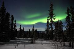 [免费图片] 自然・景观, 极光, 夜空, 美國, 阿拉斯加州, 201007191900