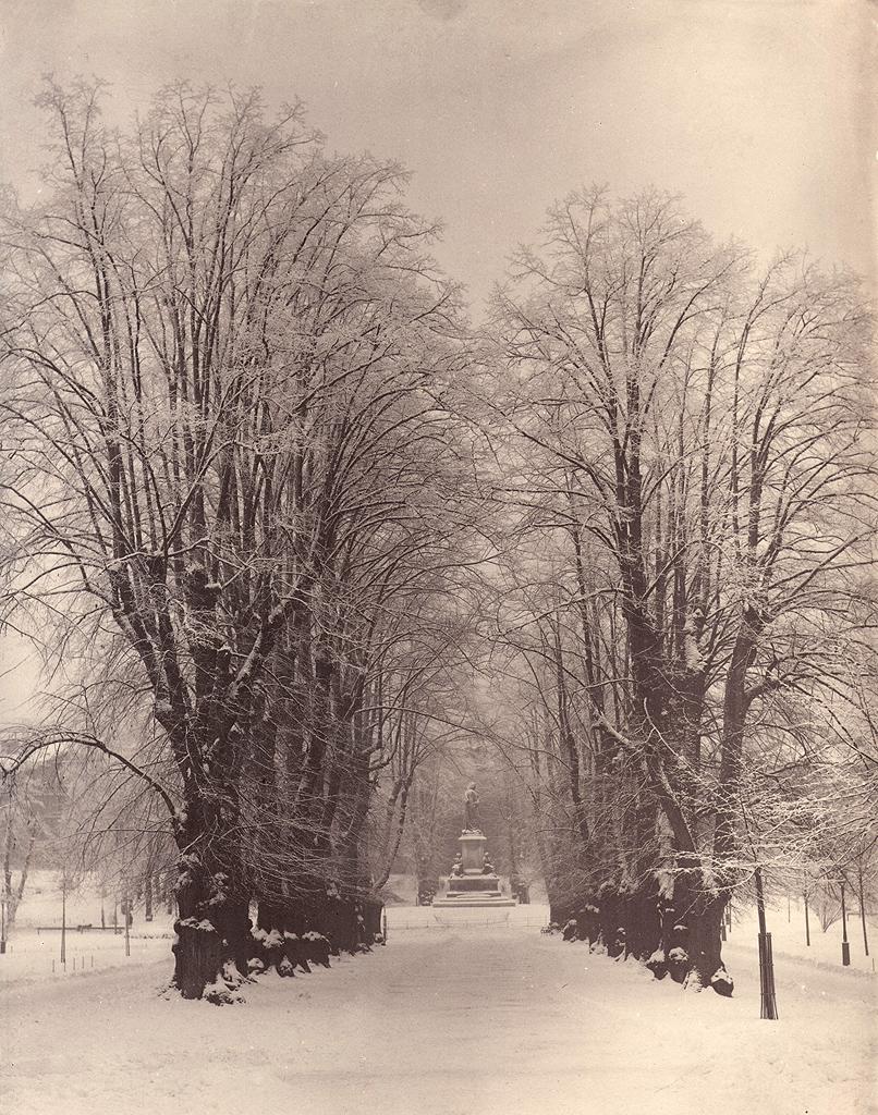 The World's Best Photos of riksantikvarieämbetet and tree - Flickr ...