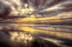 Memory of Light and Waves (Philerooski) Tags: ocean light sky sun bird beach water clouds golden intense colorful hdr highdynamicrange overprocessed 3xp