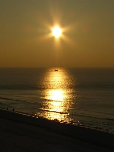 Substitute Sunshine